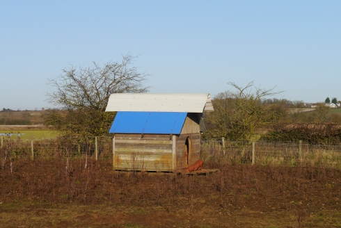 The latest in pig-proof accommodation; our Pig Ark